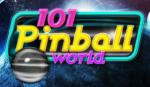 101 Pinball World Box Art