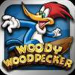 Woody Woodpecker Box Art