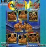 Champion Wrestler Box Art
