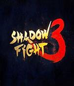 Shadow Fight 3 Box Art