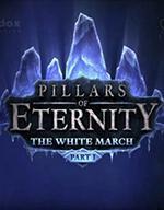 Pillars of Eternity: The White March Part I Box Art