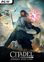 Citadel: Forged with Fire Box Art