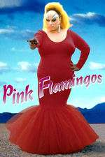 Pink Flamingos Box Art