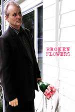 Broken Flowers Box Art