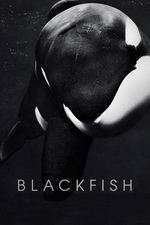 Blackfish Box Art