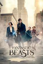 Fantastic Beasts and Where to Find Them Box Art