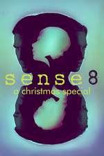 Sense8: A Christmas Special Box Art