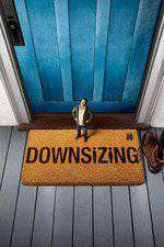 Downsizing Box Art
