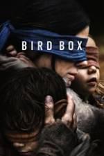 Bird Box Box Art
