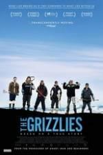 The Grizzlies Box Art