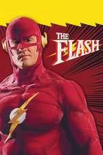 The Flash Box Art