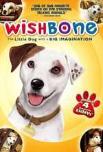 Wishbone Box Art