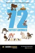 72 Cutest Animals Box Art