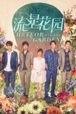 Meteor Garden Box Art