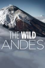 The Wild Andes Box Art