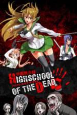 Highschool of the Dead Box Art