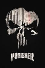 Marvel's The Punisher Box Art